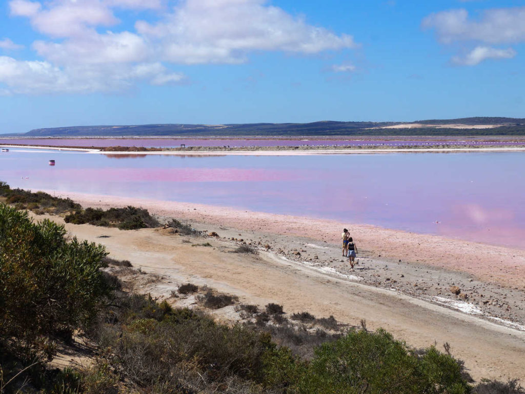 Pink Lake in Westaustralien